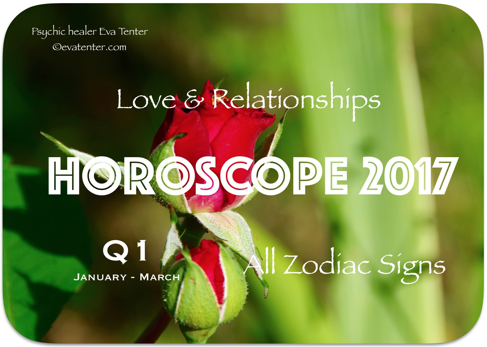 The choice of flowers by March 8 on the sign of the zodiac